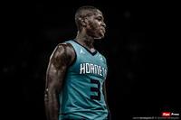 Terry the Hornet