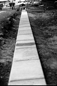 La ligne blanche