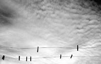Laisser sécher les nuages