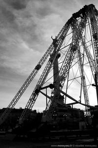Araignée Eiffel