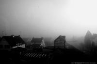 Piégé par la brume