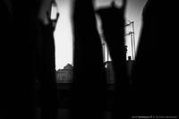 Entre les ombres