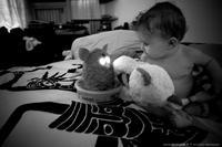Entretien avec un Furby